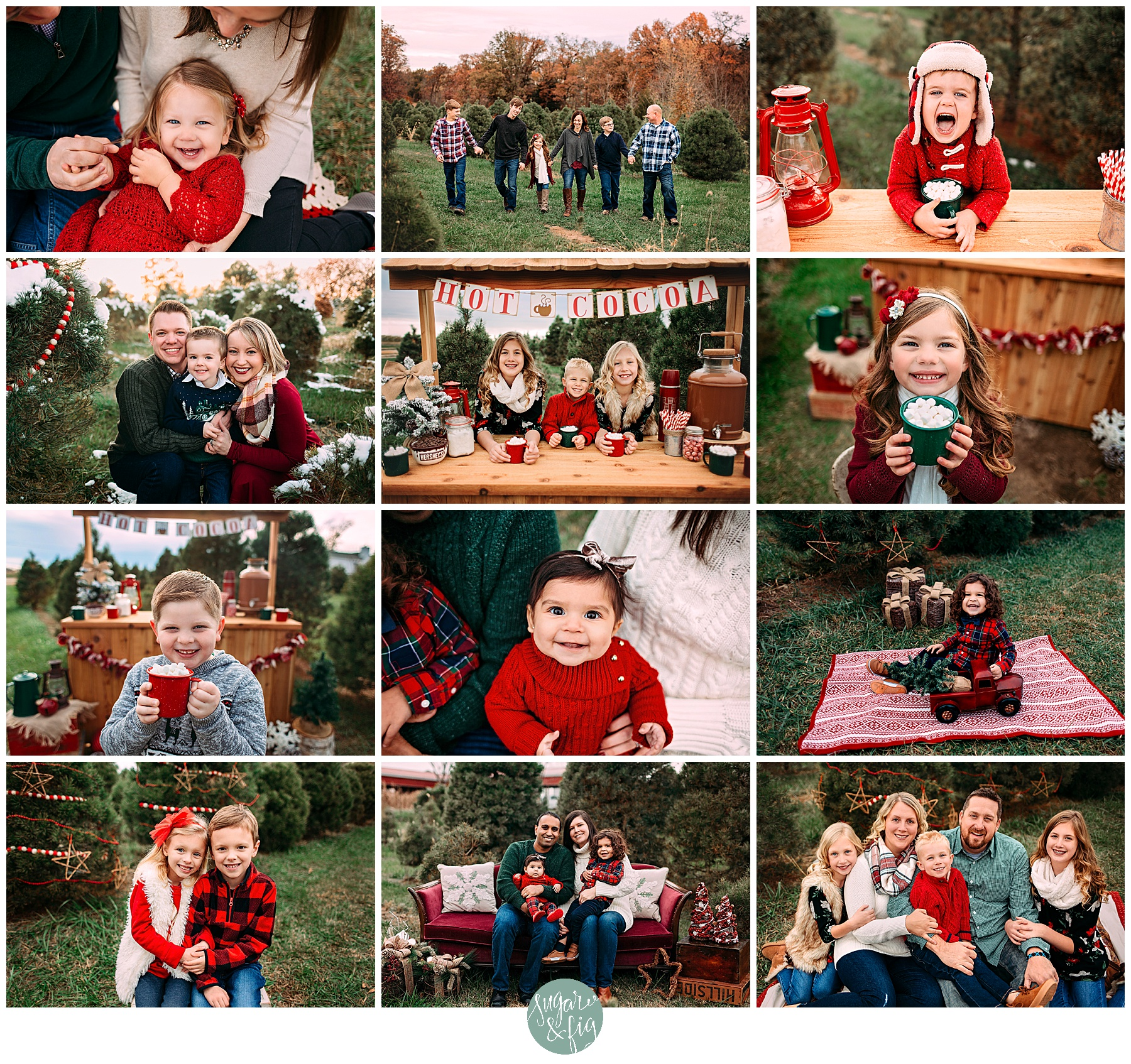 2019 Christmas Mini Sessions St Louis Family Photographer Sugar Fig Photographs